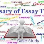 Essay terms